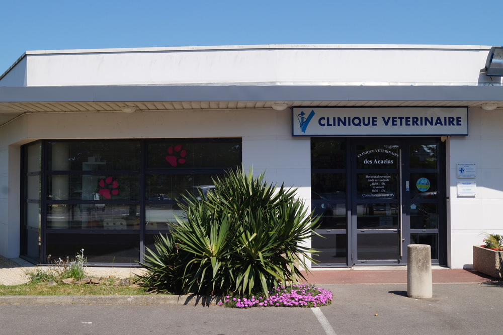 Clinique vétérinaire Saint-Brévin (44)